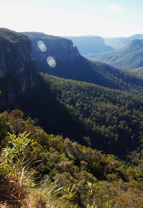 Blue Mountains Photography by Julie Green