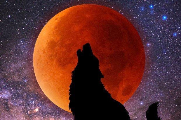 blood moon 2019 arizona time - photo #35